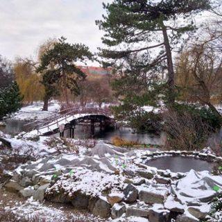 Ogród Botaniczny: Zimowe weekendy
