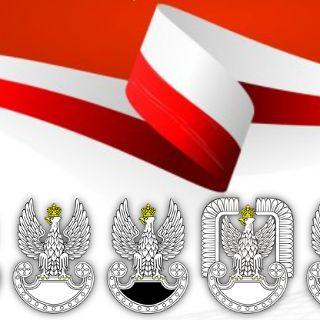 Obchody Święta Wojska Polskiego oraz 101. rocznicy Bitwy Warszawskiej