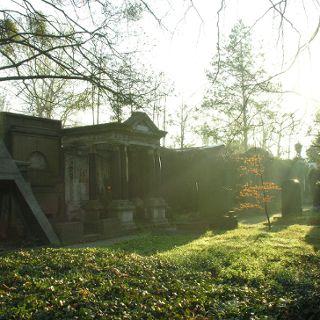 Oprowadzanie po Starym Cmentarzu Żydowskim