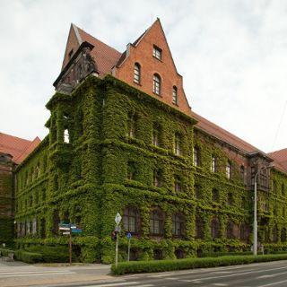 Muzeum Narodowe i oddziały. Czynne od 5 maja