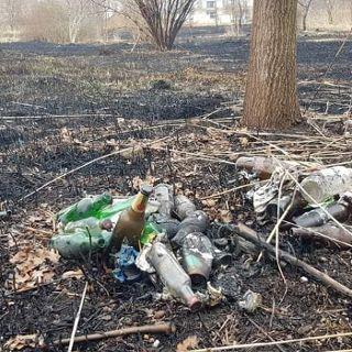 Sprzątamy park Krzycki