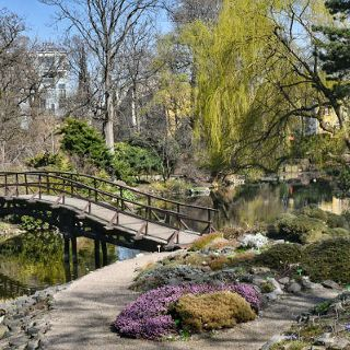 The season starts in the Botanical Garden