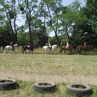 """Ośrodek Jeździecki """"Ranczo na Grobli"""" – oferta jeździecka"""