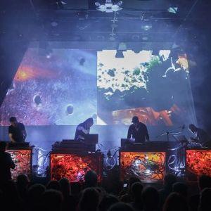 Performans: Koncert z udziałem mrówek