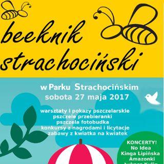 Beeknik strachociński – czyli gramy dla pszczół i ratujemy spalona pasiekę!
