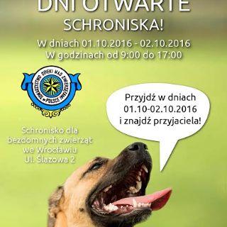 Dni otwarte Schroniska dla Bezdomnych Zwierząt we Wrocławiu