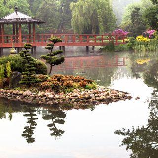 Japanese Garden starts the season