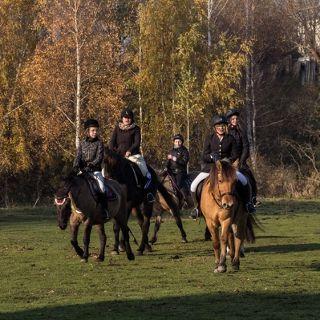 Ranczo nad Odrą – oferta jeździecka