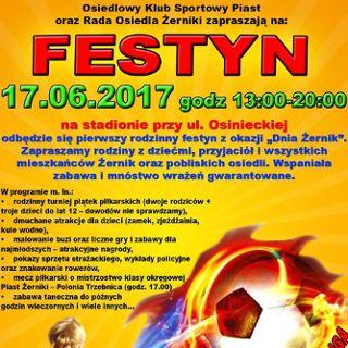 Dni Żernik – osiedlowy festyn sportowy