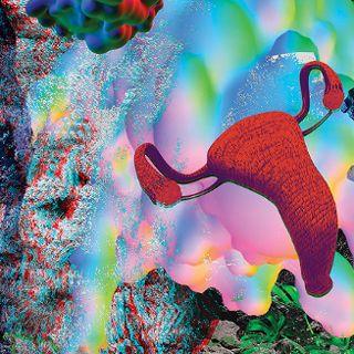 Życie wewnętrzne: Brzuch. Scena artystyczna 19. MFF Nowe Horyzonty