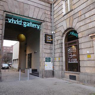 Vivid Gallery