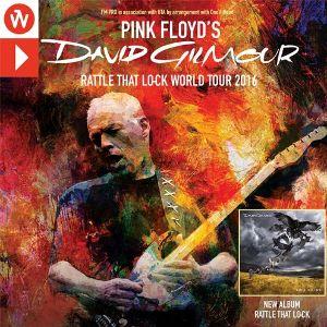 David Gilmour we Wrocławiu