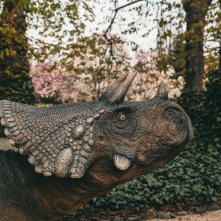 Majówka z dinozaurami w Ogrodzie Botanicznym