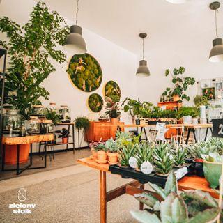 Zielony Słoik – miejska pracownia ogrodnicza