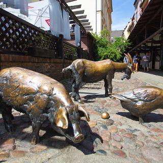Jatki - Gruppe von Schlachttieren an den Jatki