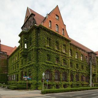Jubileusz 70-lecia Muzeum Narodowego we Wrocławiu – dla dorosłych