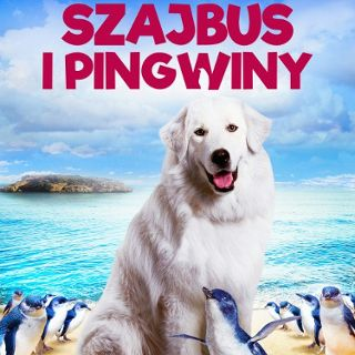 Szajbus i pingwiny (dubbing)