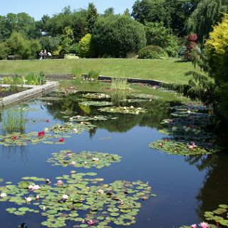 Botanical Garden season 2020 – opening hours